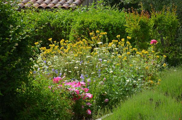 Gîte Durocher-St Denis les Martel-jardin3