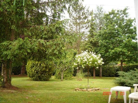 vinter jardin 2