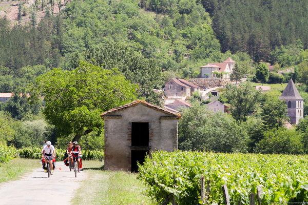 Luzech - A vélo dans les vignes