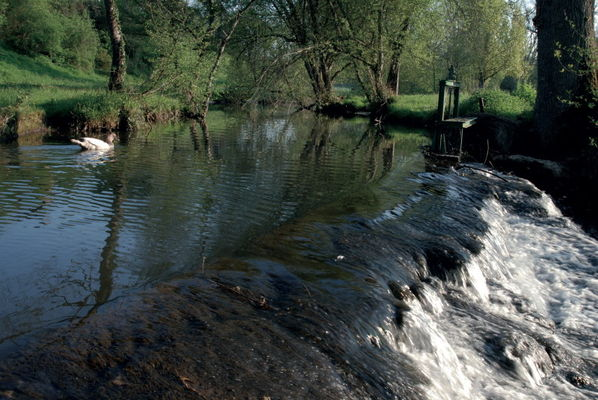 Thémines : Ruisseau de L'Ouysse