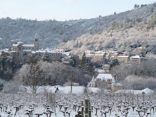 Albas sous la neige