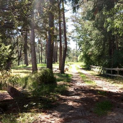 Camping Moulin de lacombe - Saint Geniez (6)