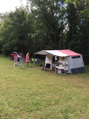 Camping-avec- chien