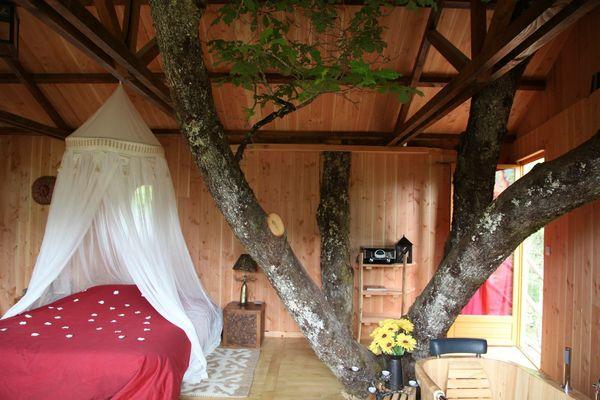 Cabane, intérieur