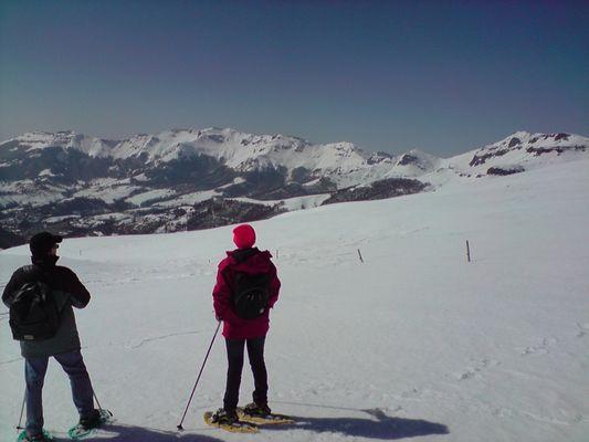 CaracoleNature_Raquette à neige dans le massif du Cantal