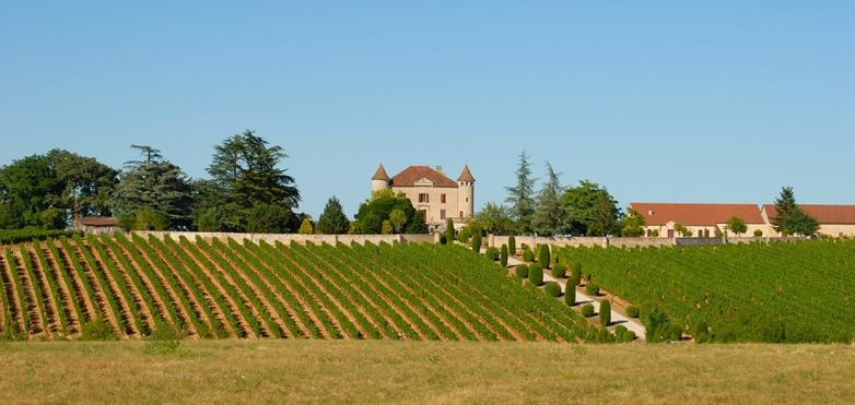 Chateau Chambert - Castle and Vineyard