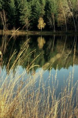 Cardaillac : Plan d'Eau des Sagnes