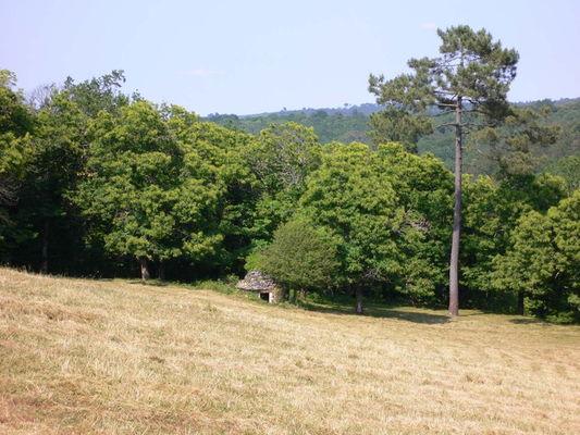 Plateau de la Thèze