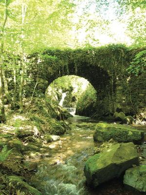 Rivière La Bave
