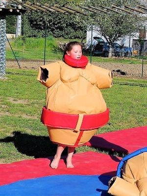 Copeyre_Fan_Zone-Sumo