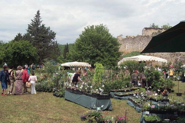 Léobard : Fête des plantes de l'Abbaye-Nouvelle