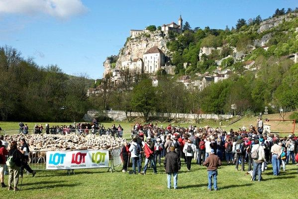Transhumance Rocamadour-Luzech