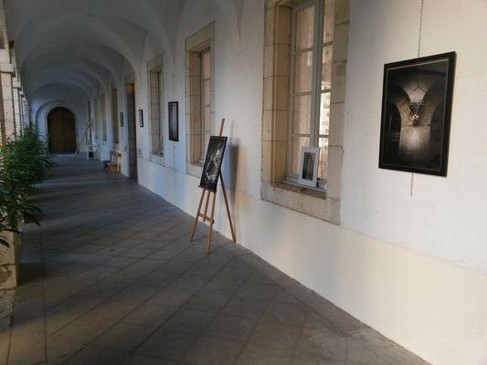 Exposition photos et peintures
