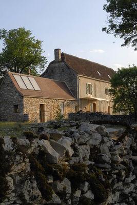 Ferme de Cazals -Marcilhac-Sur-Célé - Bos