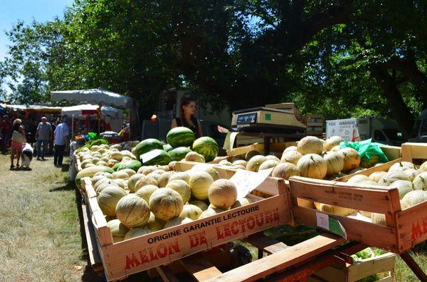 Foire de Caminel - Les melons