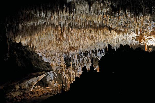 Grottes de cougnac - Gourdon - plafond concretions