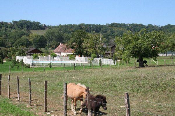12 Gîte Bonhomme - Cavagnac