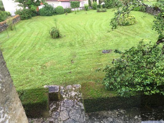 Le jardin vu de la petite terrasse