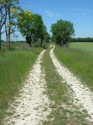Chemin blanc de Bagat