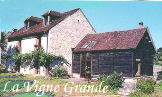 La vigne grande-collonges