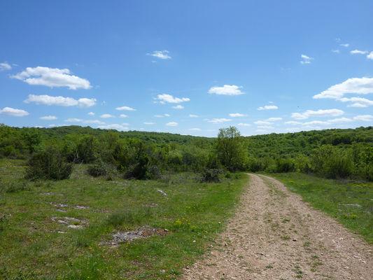La Borie Sèche - Plateau du Pech de Lacave_16 © Lot Tourisme - C. Sanchez