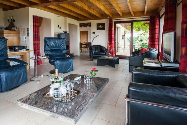 La Villa Touloumo - Mayrac - Salon