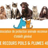 Le Recours Poils et Plumes 46