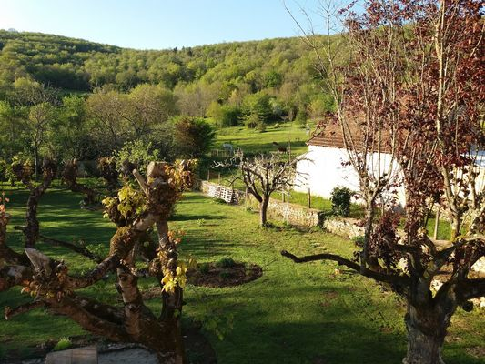 Les3prunelles_StPierreToirac_jardin3