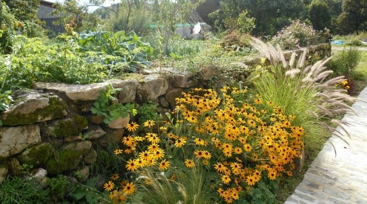 LesEscures-Camps_jardin