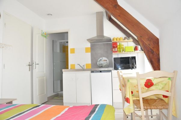 LocationStudioJaune-LouPeDeGril-Curemonte_kitchenette