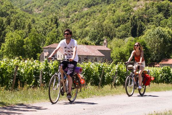 A vélo dans les Vignes sur la Véloroute