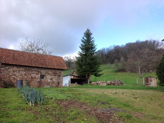 M.Veaux-StBazileDeMeyssac_jardin