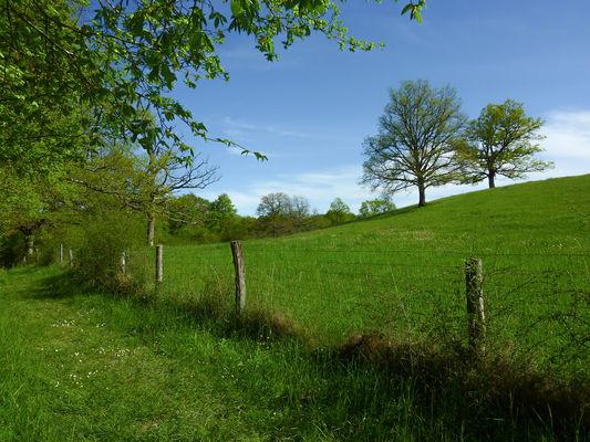 Marais de Bonnefont - Chemin herbeux contournant la coline © Lot Tourisme - C. Sanchez