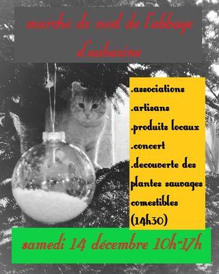 Marché de Noël Aubazine