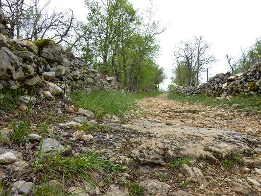 Néguebout - Chemin de pierre blanche © Lot Tourisme - C. Sanchez