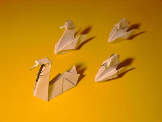 Origami_05426