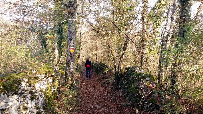 Brengues - Sentier des Anglais © Lot Tourisme - A. Leconte