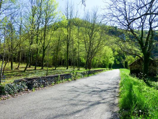 Trigoulet - Balade au milieu des chênes © Lot Tourisme - C. Sanchez