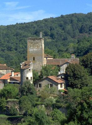 Vestiges du Fort médiéval à cardaillac