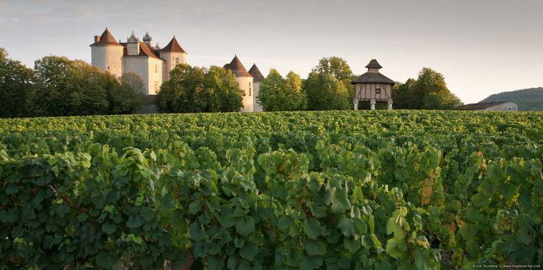 Caillac - Vignoble du Château La Grézette