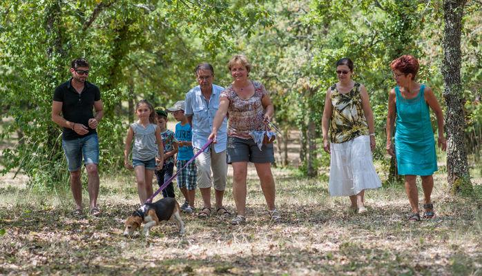 Visite de trufiière © Lot Tourisme - C. ORY