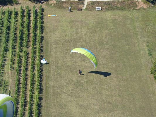 atterrissage-parapente-douelle-vignes