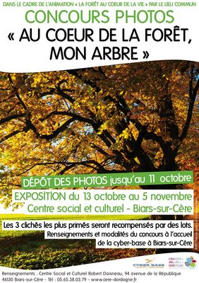 concours-photo-foret