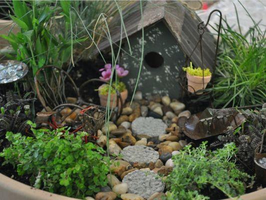 jardin-miniature-1