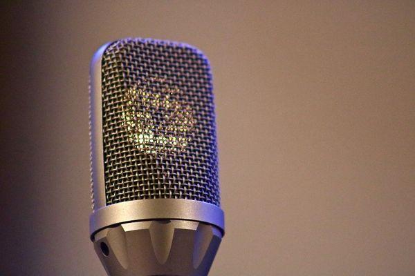 microphone-4046921_1280©pixabay