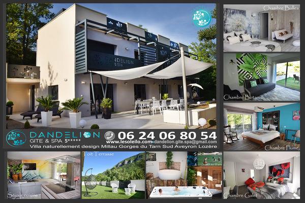 Dandelion_gite_spa_piscine_nature_eco_design_gitedegroupe_gorgesdutarn_millau_viaduc_aveyron_lozere_spa tel