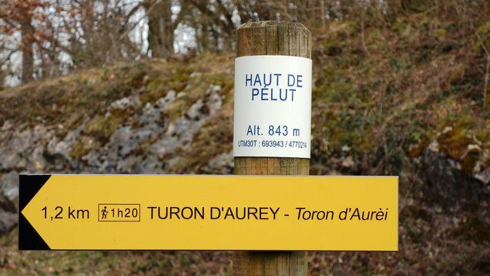 Turon d'Aurey