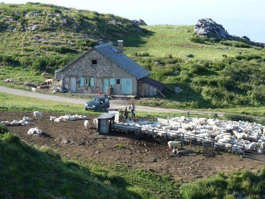Cabane à la Pierre Saint-Martin