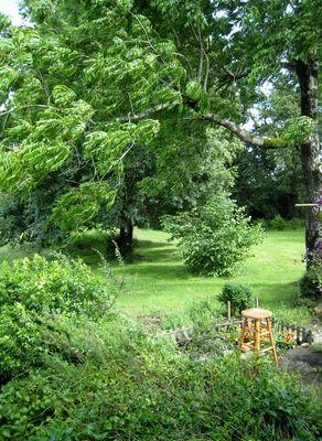 Centre Saraswati - jardin