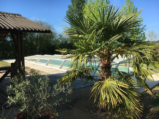 Cousinard piscine
